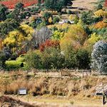 15Our-valley-the-most-beautiful-in-Victoria